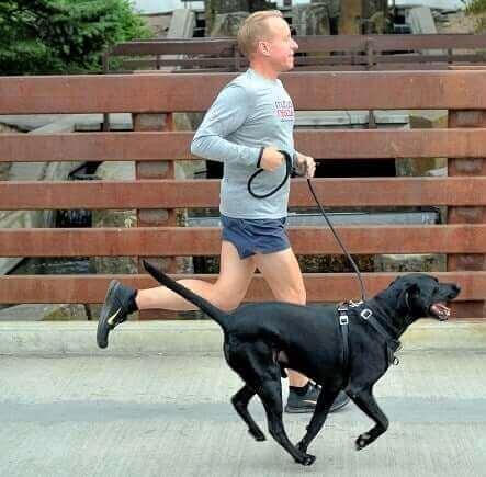 En hund og eieren deres løper med