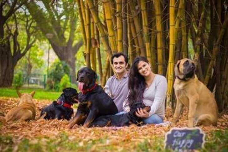En familie viser at hunder og babyer kan bo sammen