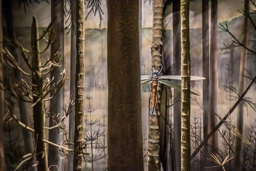 En gigantisk øyenstikker som sitter på et tre