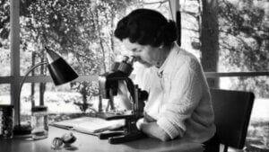 Rachel Carson som ser inn i et mikroskop