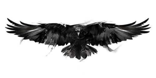 En tegning av en kråke