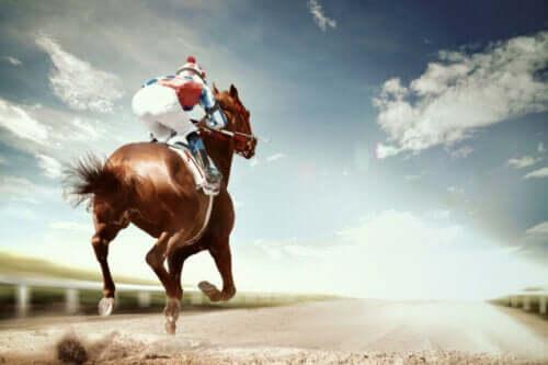 De hyppigste sykdommene og skadene hos konkurransehester