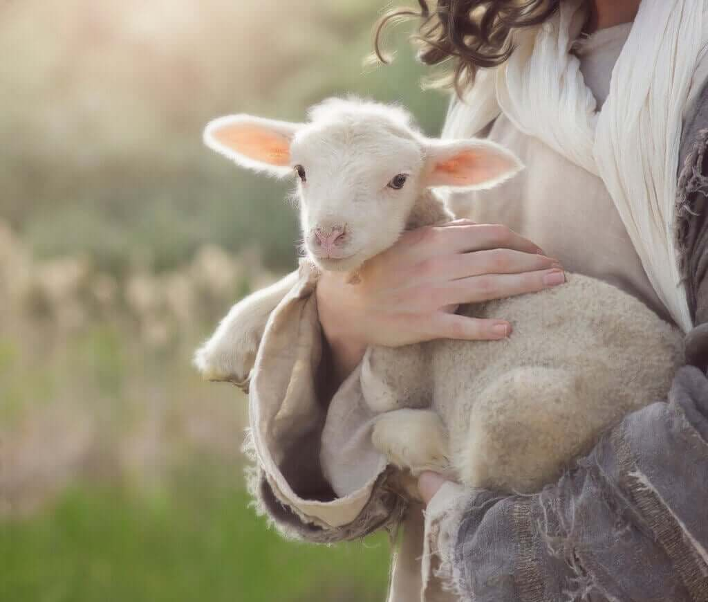 Diaré hos nyfødte små drøvtyggere