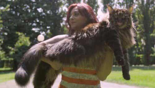Den lengste katten og andre verdensrekordholdere