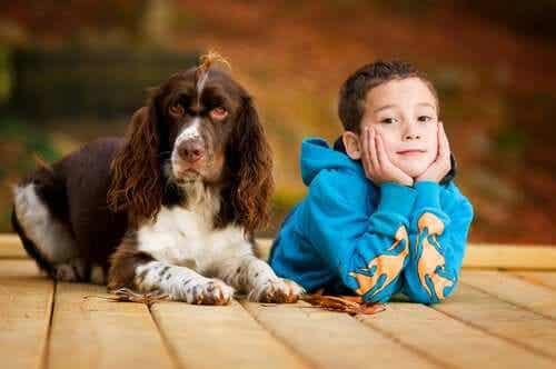 En hund med et barn.