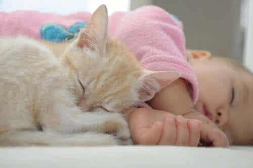 En katt og en baby som sover sammen.