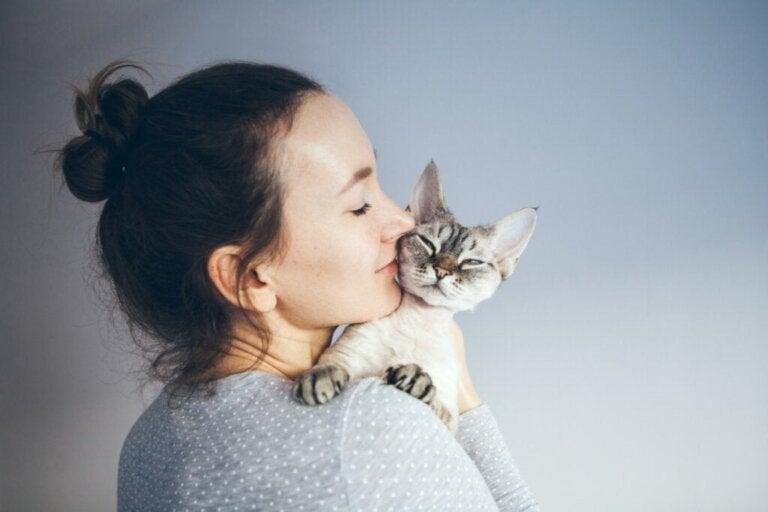 Er det bra for helsen din å leve med en katt?
