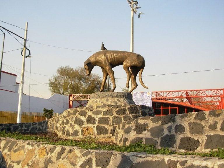 Standbeeld van een zwerfhond