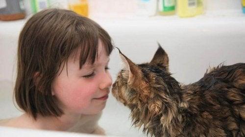 De ongelooflijke vriendschap van een klein autistisch meisje en haar kat