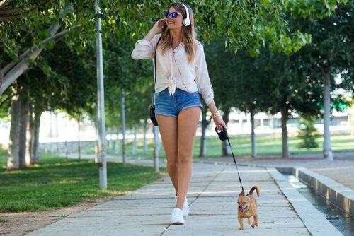 5 Redenen waarom goede wandelingen voor jouw hond belangrijk zijn