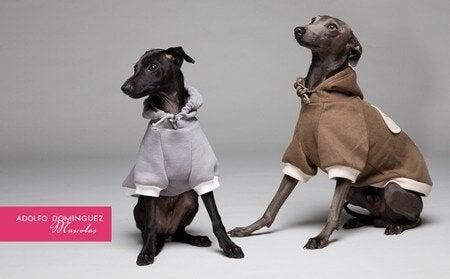 Kledingcollectie voor honden ontworpen door Adolfo Dominguez