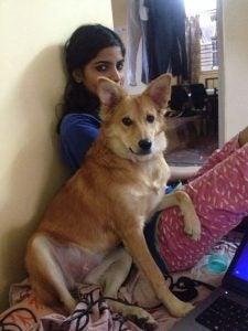 Het meisje dat een huwelijksaanzoek afsloeg vanwege haar hond