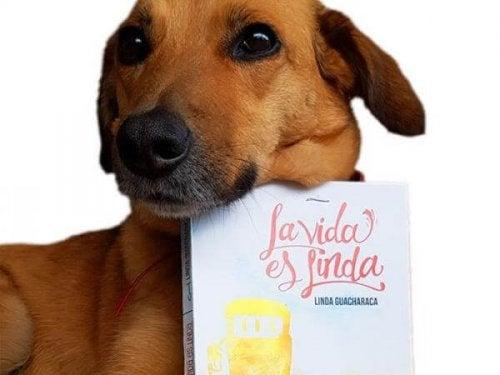 Hond met een boek in de bek