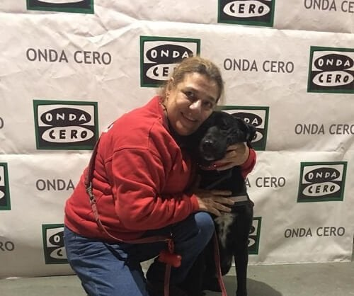 Tango de therapiehond bij het Rode Kruis