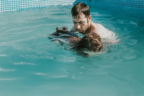 Eigenaar neemt zijn pups mee in het zwembad