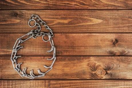 Alles dat je moet weten over illegale halsbanden