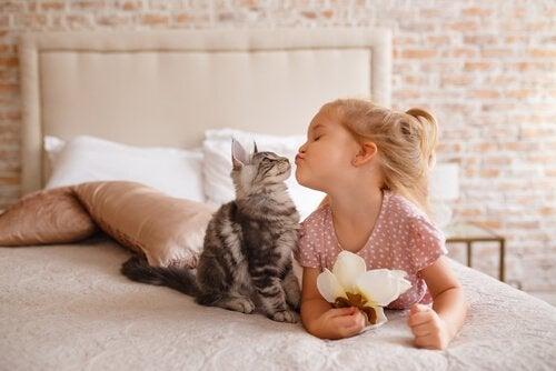 Kat die met een klein meisje socialiseert