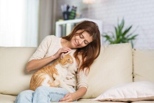 Vrouw die met kat speelt