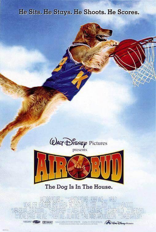 hond speelt basketbal