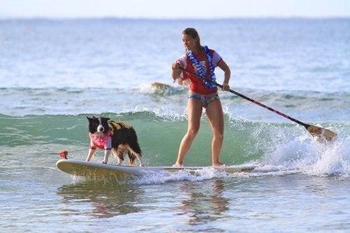 Vrouw en hond op een surfplank