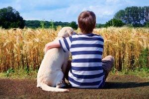 Jongen zit met hond in veld