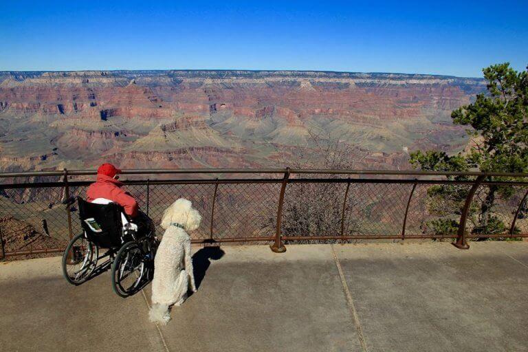 Norma en Ringo genieten van het uitzicht