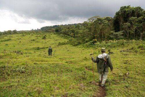 Mannen patrouilleren in een natuurgebied