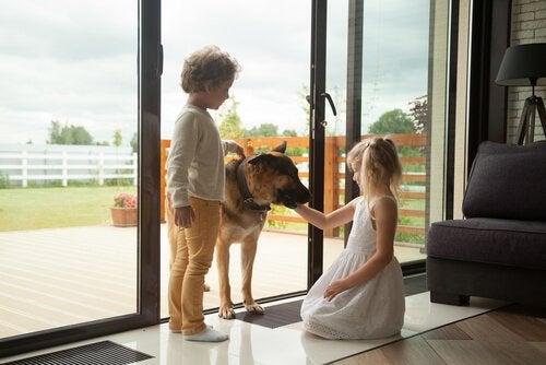 Twee kinderen aaien een hond