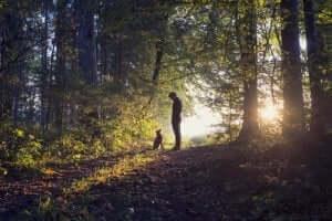 Man laat zijn hond in het bos uit