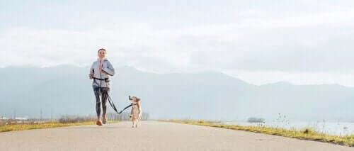 Voordelen van hardlopen met je hond