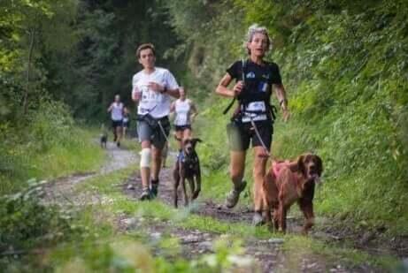 Een groep mensen joggen met hun honden