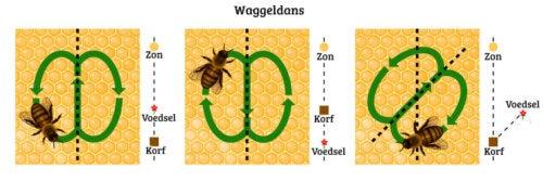 Waggeldans