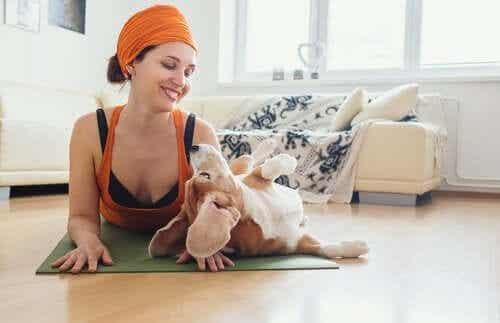 De voordelen van doga - yoga voor honden