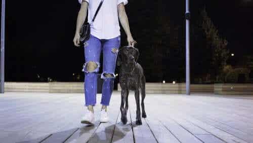 Een vrouw laat 's avonds haar hond uit
