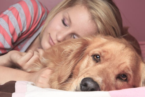 Zalety i wady spania ze swoim zwierzakiem