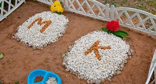 cmentarze dla zwierząt groby