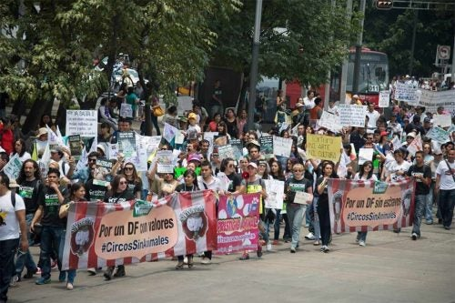 marsz w obronie praw zwierząt