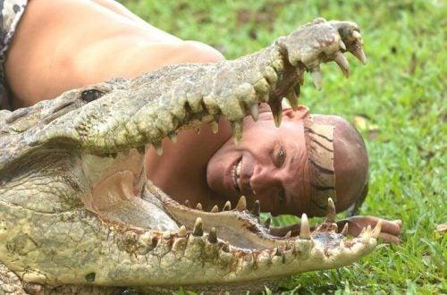 Krokodyl i człowiek