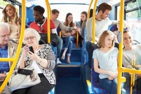 Miejsca dla psów w autobusie