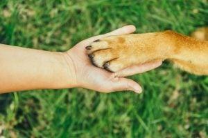 manicure psa