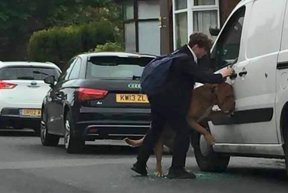 chłopak ratujący psa