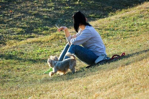 Kobieta na łące pali przy psie
