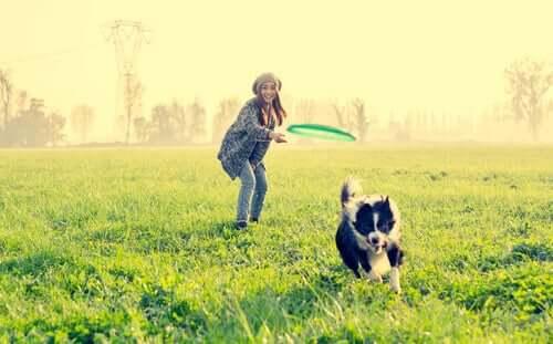 Ciekawe zabawy dla psa – 9 propozycji