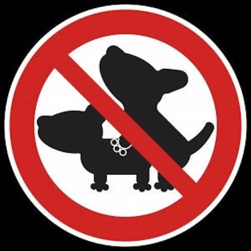 znak zakazujący kopulacji psów satyriasis