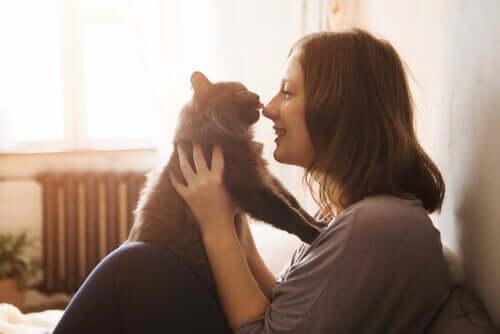 zabawa kobiety z kotem na rękach