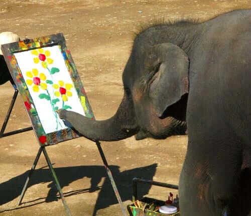 Słonie, które malują obrazy