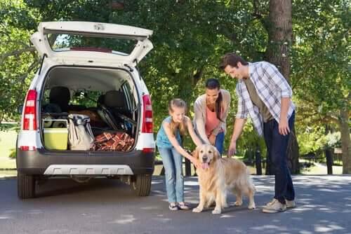 Transport psa, rodzina z psem przed autem