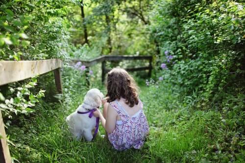 zwierzę w prezencie pies z dzieckiem