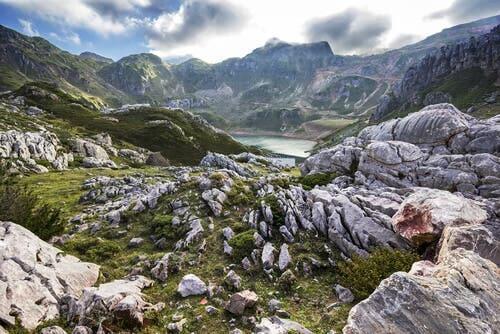 Hiszpania: gdzie można zobaczyć dzikie zwierzęta?
