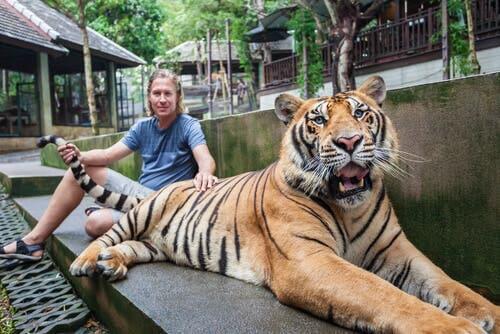 mężczyzna z tygrysem